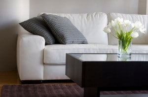 Upholstery Cleaning Palm Bay FL 321-557-3038